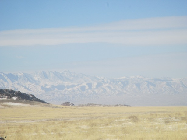 We could see the Altai mountain range (the tallest in Mongolia) over in Govi-Altai
